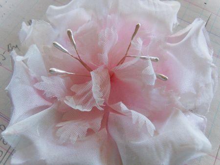 Pale pink flower1