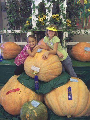 Winning_pumpkins
