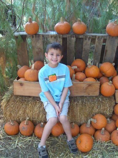 B_and_pumpkins